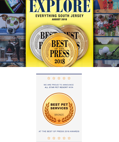 Best of Everything South Jersey :: The Press of Atlantic City